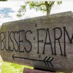 busses-farm